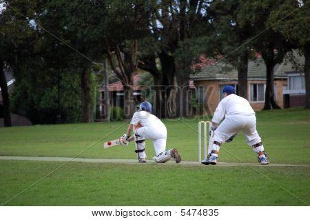 Cricket Sweep Shot