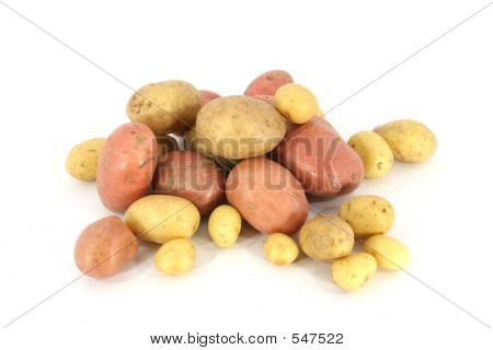 Pile Of Potatoes (2)
