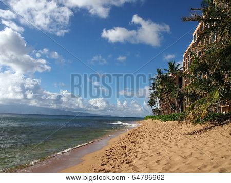 Kaanapali Beach With Trees, Hotels, And Lanai In The Distance