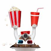 movie dog up side down holding popcorn and cola poster