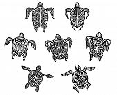 Tribal turtles tattoos set isolated on white bnackground poster