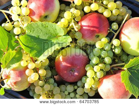 Apples and grapes on the flat outside