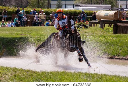 Cross country horse race