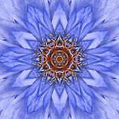 Blue Concentric Flower Center Close-up. Mandala Kaleidoscopic design poster