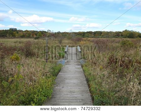Path Along Lake Defiance in Early Fall in Moraine Hills State Park