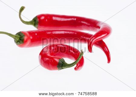 red peperoni peppers isolated on white background