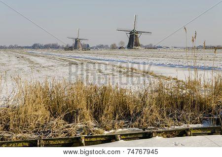Two Dutch Mills In Winter