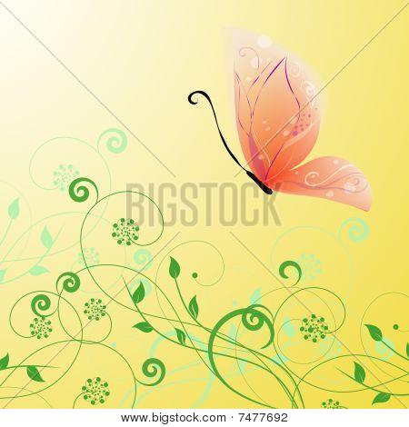 elegant butterfly vector