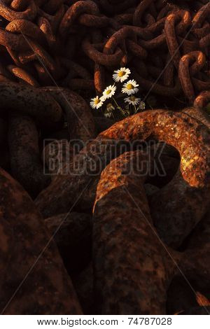 Rusty Chains Cradling Spring Flowers