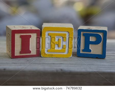 Individual Education Plan (IEP)