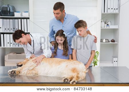 Smiling vet examining a dog with its scared owners in medical office poster