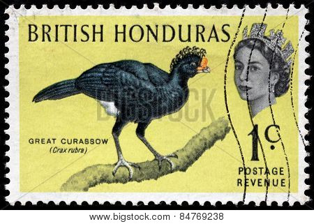 Great Curassow Stamp