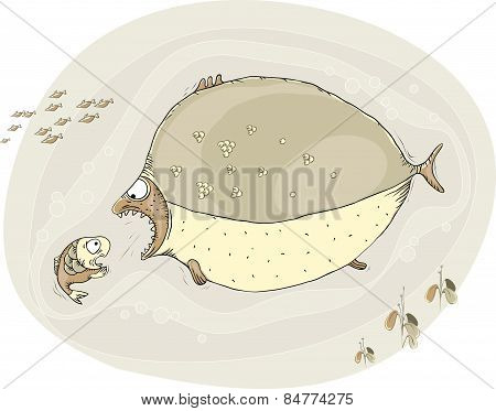 Big Fish Wants To Catch A Small One, Which Is In Great Fear