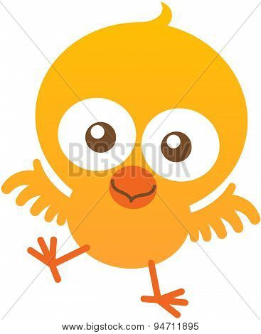 Cute baby chicken flapping and smiling enthusiastically