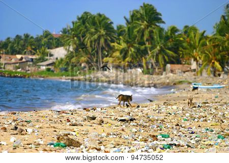 Garbage On A Beach Left By Tourists.