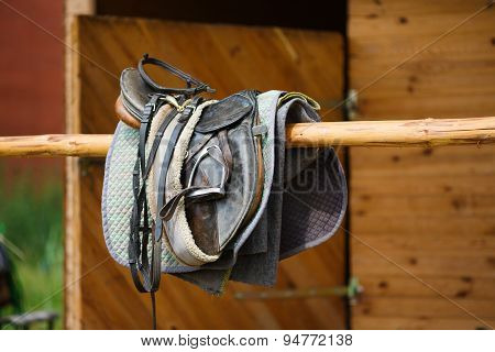 A Leather Saddles Horse