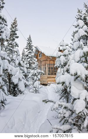 House Under Snow In Winter Wood Chalet Among Spruce Trees In The Snow