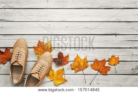 Autumn collection of footwear -Women shoes on a wooden background with dry leaves