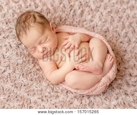 lovely newborn curled up asleep, wrapped in pink diaper on knitted blanket