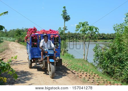 Carrying Flowers On Rural Road In Southern Vietnam