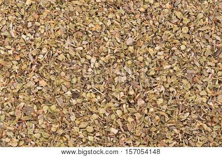 Closeup Dried Oregano background. Dried Oregano. food