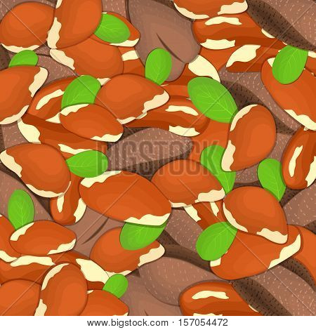 The brazilian nut background Closely spaced delicious brazilnuts vector illustration Nuts pattern walnut fruit in the shell whole shelled leaves appetizing looking for packaging design of healthy food