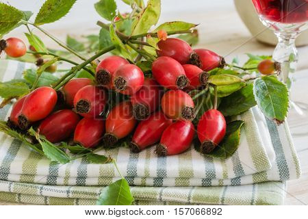 Fresh picked Rose Hips or rose haws an Autumnal fruit of the wild Dog Rose