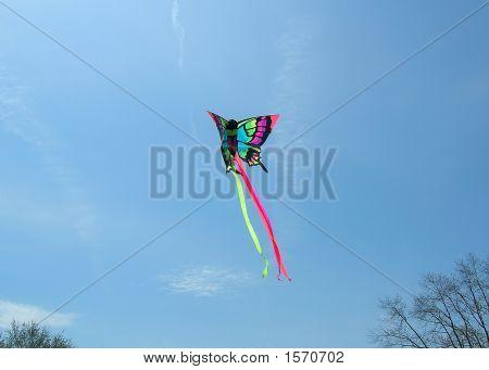 Butterfly Kite