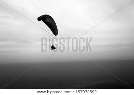 Skimmer black and white on the sky