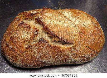 Fresh homemade sourdough bread on stainless steel counter
