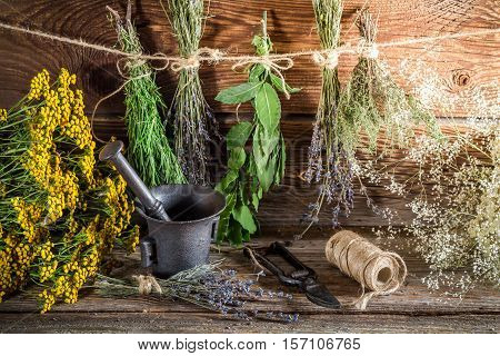 Aromatic Herbs For Tincture As Alternative Medicine