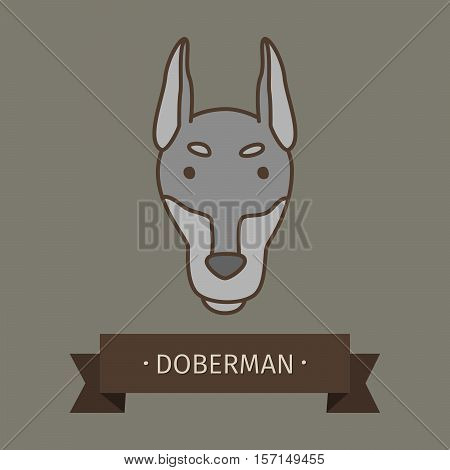 Doberman breed dog for logo design. Vector colored hand drawn dog head