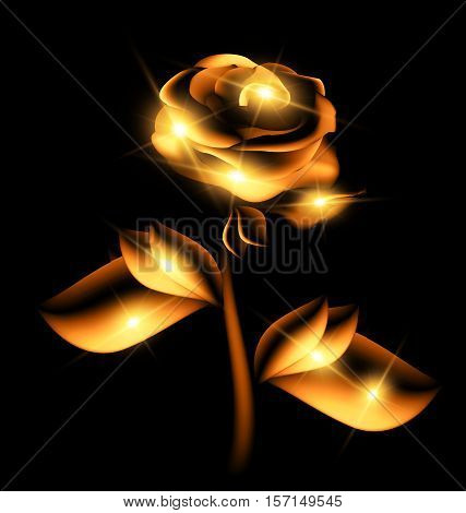 black background and the fantasy golden translucent flower