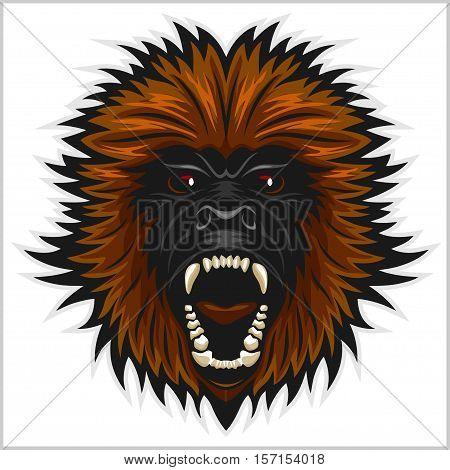Gorilla head vector illustration - isolated on white