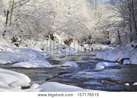Beautiful river in winter forest with fairy trees in snow and snow caps on a water