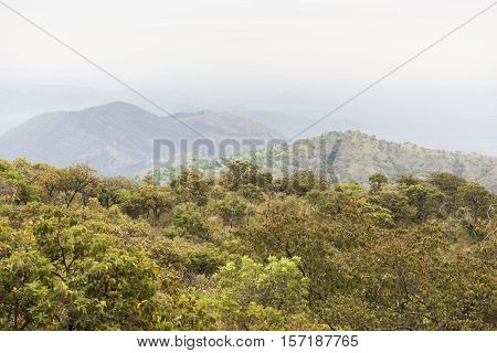 African landscape in lower Omo Valley. Ethiopia.