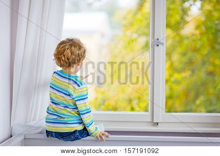 Adorable little blond kid boy sitting near window and looking on raindrops and autumn yellow landscape and trees, indoors. Happy funny child in colorful clothes.