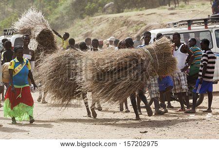 People Carry Twigs At Village Market. Bonata. Omo Valley. Ethiopia.