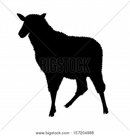 sheep vector illustration black silhouette side profile