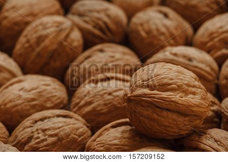 walnuts photo in the nutshell, circassian walnuts background