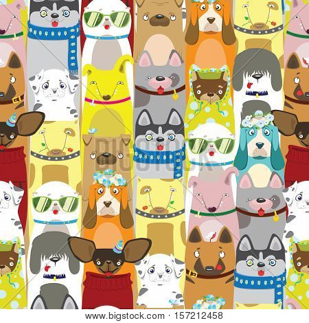 Colored differents cute dogs with acessories. Pattern