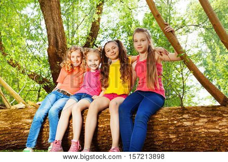 Portrait of four cute girl friends sitting together on fallen tree trunk in summer forest