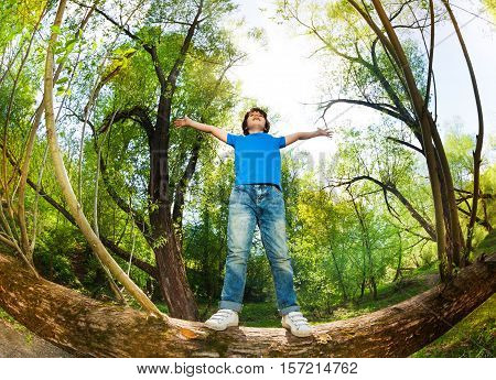 Portrait of ten years old boy standing on fallen tree stem with his hands up at sunny day