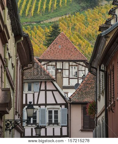 Ribeauville, Bas-rhin, Alsace, Exterior Old Half-timbered Houses, Vineyard