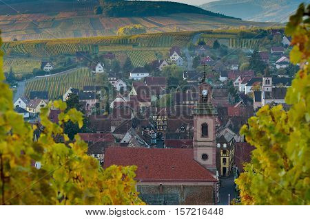 Alsace Village, With Vineyard, Riquewhir. France