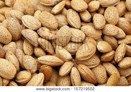 Whole Raw Almond Nuts In Nutshells Close Up