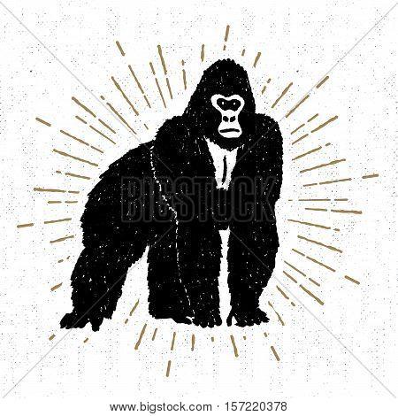 Hand drawn icon with textured gorilla vector illustration.