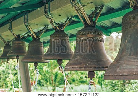 Bronze bells different sizes on a background of  green trees