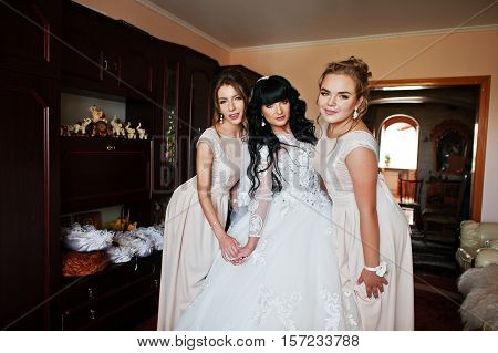 Glamorous Brunette Bride With Bridesmaids Posed On Her Room At Wedding Day.