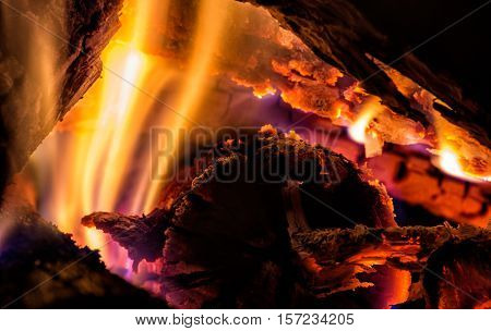 Wooden sticks covered with flames in the campfire. Campfire closeup, Flaming logs.